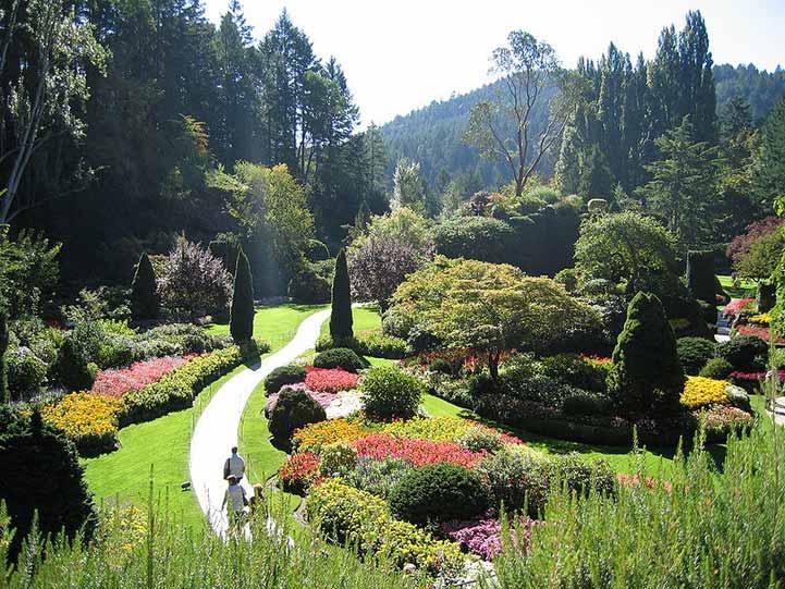 Having a Fragrance Garden for Your Home